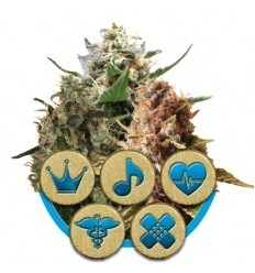 Medical Mix / Royal Queen Seeds